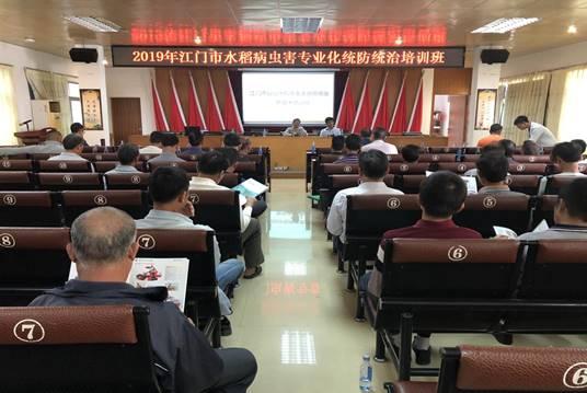汶村镇举行水稻病虫害专业化统防统治培训班